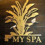 MySpa2