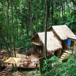 TreeTopAdventurePark7