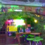 JungleJims1
